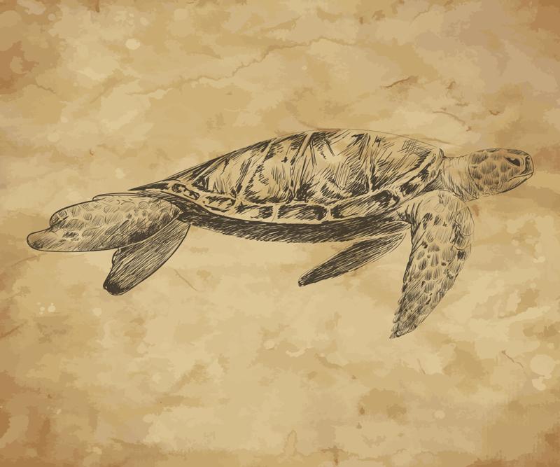 TenStickers. Mousepad Tier Schildkröte Illustration. Schauen Sie sich unbedingt unser wunderschönes Original-Mauspad mit einer anpassbaren Schildkrötenzeichnung an. Das Produkt wird nach Hause geliefert.