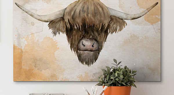 Animals canvas prints
