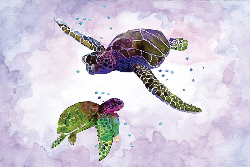 TenStickers. sets de tables avec tortues Tortues colorées. Beaux sets de table en vinyle avec des tortues dans un style très artistique. Leurs couleurs vives rendront votre table à manger incroyable.