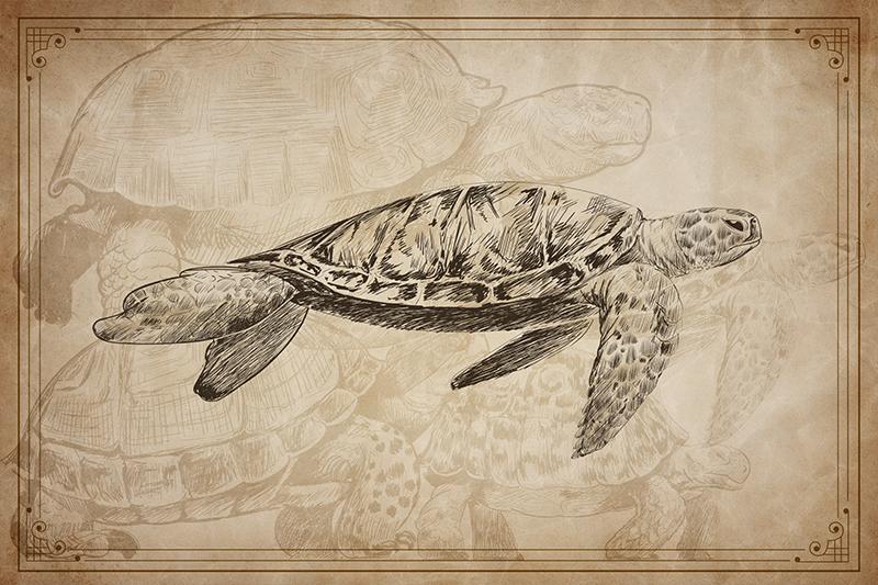 TenStickers. 棕褐色手绘乌龟动物乙烯基餐垫. 如果您喜欢经典装饰,并希望为您的餐桌增添复古气息,那么这些复古餐垫非常适合您。