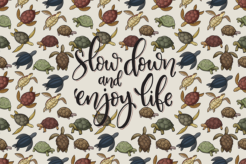 TenStickers. Variety of turtles text vinyl placemats. This quote vinyl placemat with a pattern of a variety of turtles and an inspiring quote in the center is perfect for you!