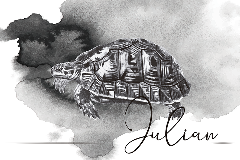 TenStickers. Turtle Illustration with name turtle vinyl placemats. Be the best host in town with this fantastic personalized name vinyl placemats with a design of a hand drawn turtle and a name at your choice.