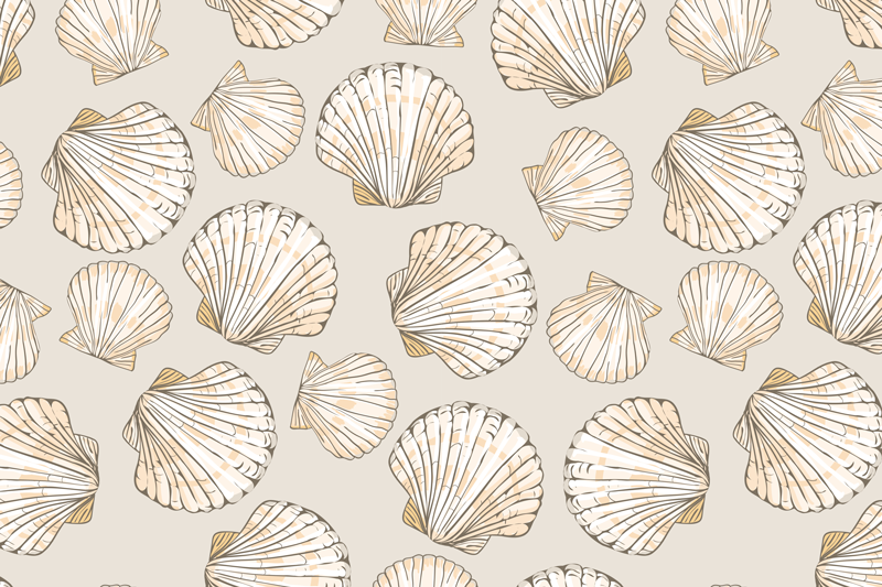 TenStickers. Big and Small Seashells shell placemats. Beige placemats with seashells, perfect decoration for you house. It presents big and small seashells on a beige background. Made of a quality vinyl.
