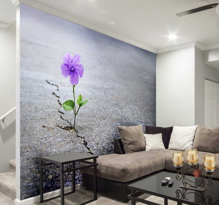 TenStickers. 3D Flower Mural Wallpaper. Transform any room in your home into an abstract Wonderland with this amazing 3D flower wall mural. Well do I delivery available!