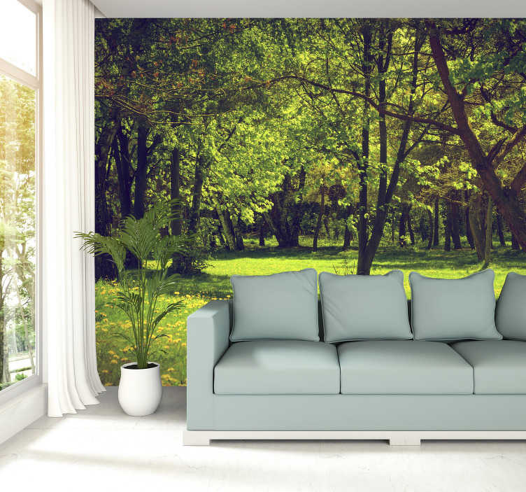 TenStickers. Beautiful spring forest landscape wall mural. Beautiful trees, stunning green grass, who wouldn't want to spend time in this forest? Decorating with a forest wall mural is the right thing to do