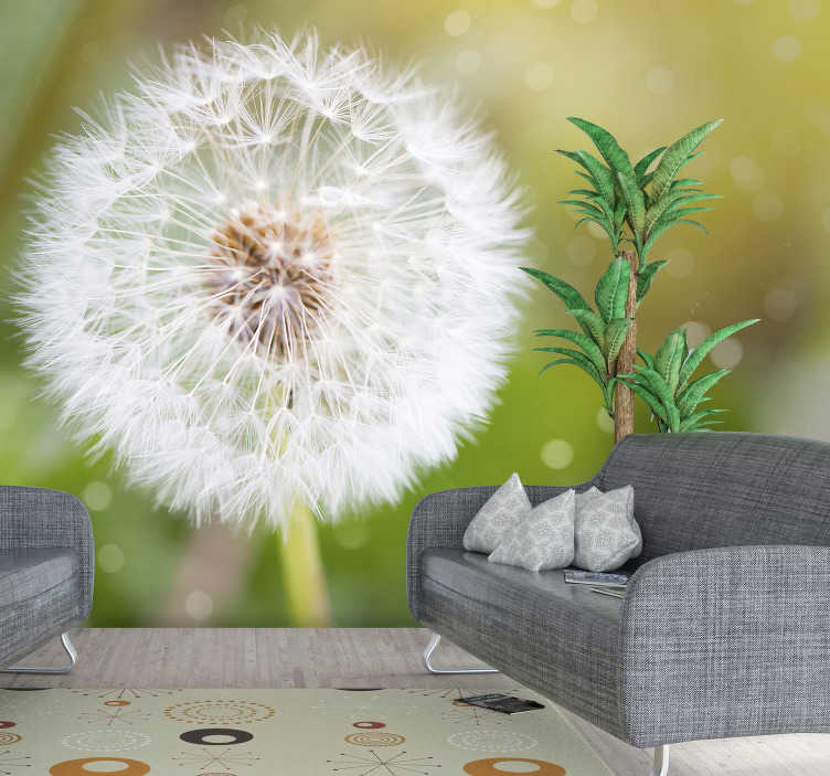 TenStickers. Dandelion flower wall mural. A stunning dandelion wall mural for your home! There's no need to make a wish with this flower, we make wishes come true with our amazing mural design