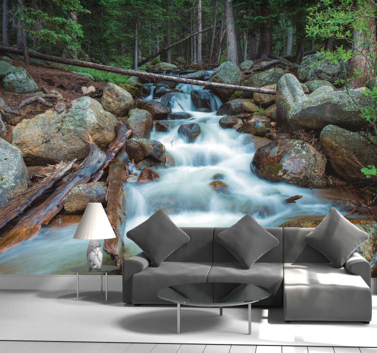 TenStickers. Wonder of nature waterfall wall mural. If you are in need of a make over in your home and are looking to bring nature inside then the answer is clear, do it with this waterfall wall mural!