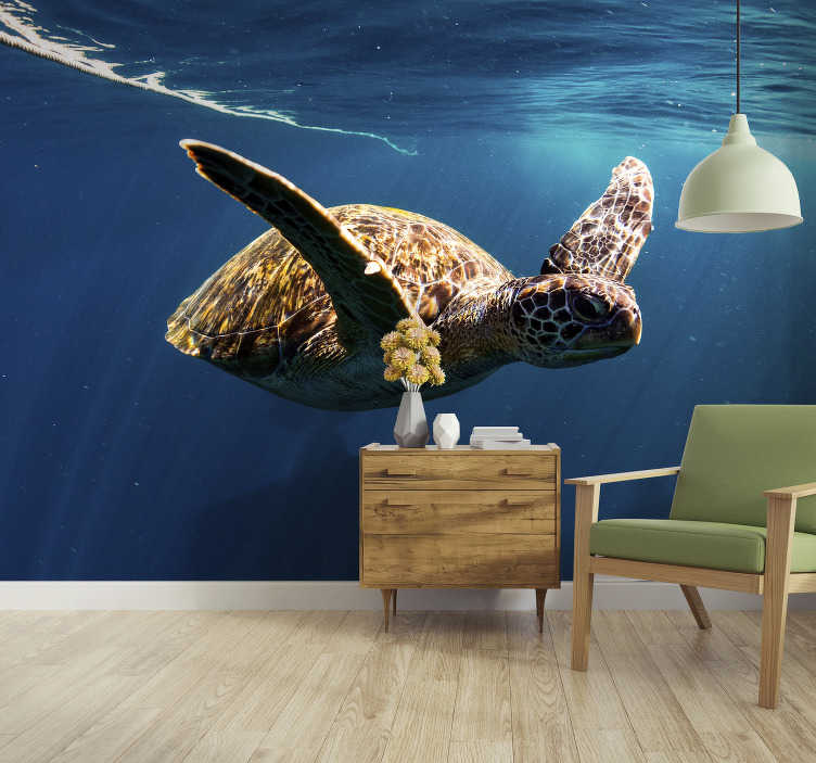 TenStickers. Papier peint photo Tortue sous la mer. Cette photo murale montre une superbe photo d'une tortue sous-marine nageant paisiblement. Cette décoration murale est fabriquée avec des matériaux de haute qualité.