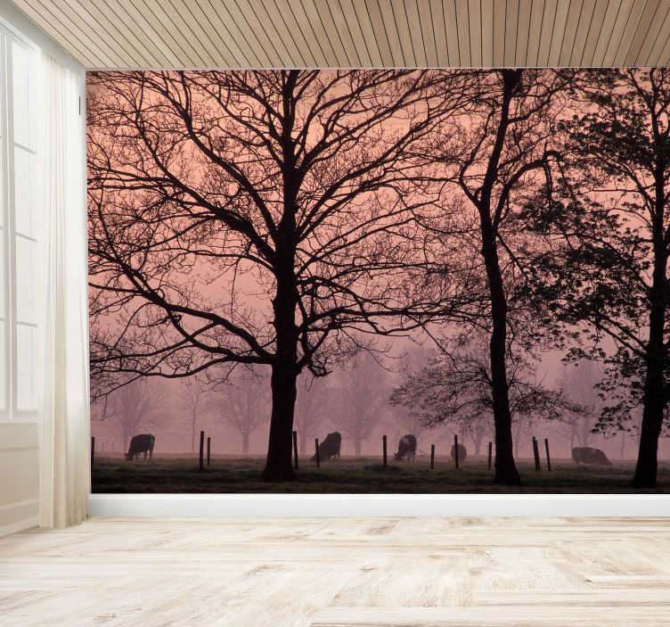 TenStickers. Cow's pasture in fog landscape wall mural. This tree photo mural shows a wonderful and mystic scene with a cow's pasture and trees in the fog. You will love this kind of decoration!
