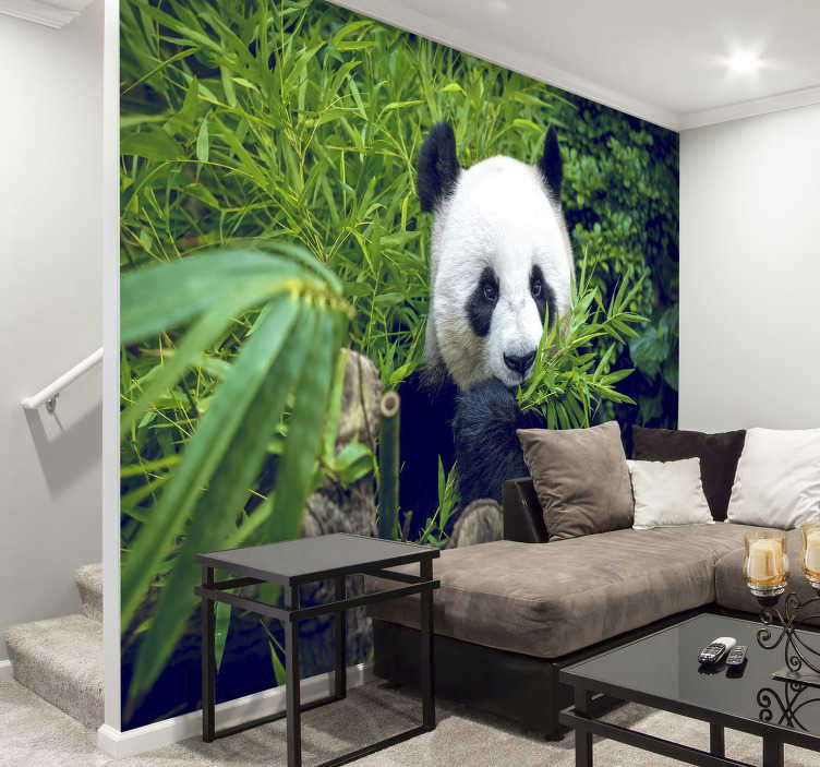 TenStickers. Bamboo Wall Mural Panda in a shadow. No need to put wildlife in danger and organise expensive trips, you can look at this panda from your sofa every day with this animal wall mural.