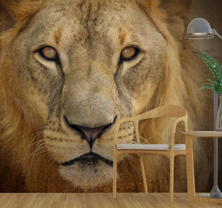 TenStickers. Wild lion Dining Room Wall Mural. A wild lion's face animal wall mural in your dinning or living room to create a wildlife view that will beautify your home  and also exciting to watch.