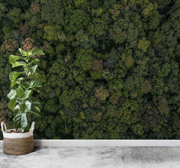 Tenstickers. Metsä valokuva maisema valokuvatapetti. Vihreän metsän puiden maiseman valokuvatapetti, iso vihreä kukkii metsä, jota voit käyttää seinällesi olohuoneessa tai makuuhuoneessa.