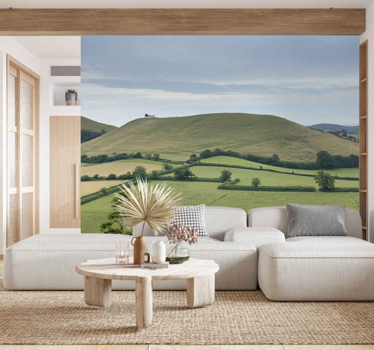 TenStickers. Somerset countryside mural wallpaper. A natural landscape wall mural design created with a beautiful green low land vegetation view. This design will create an amazement in your home.