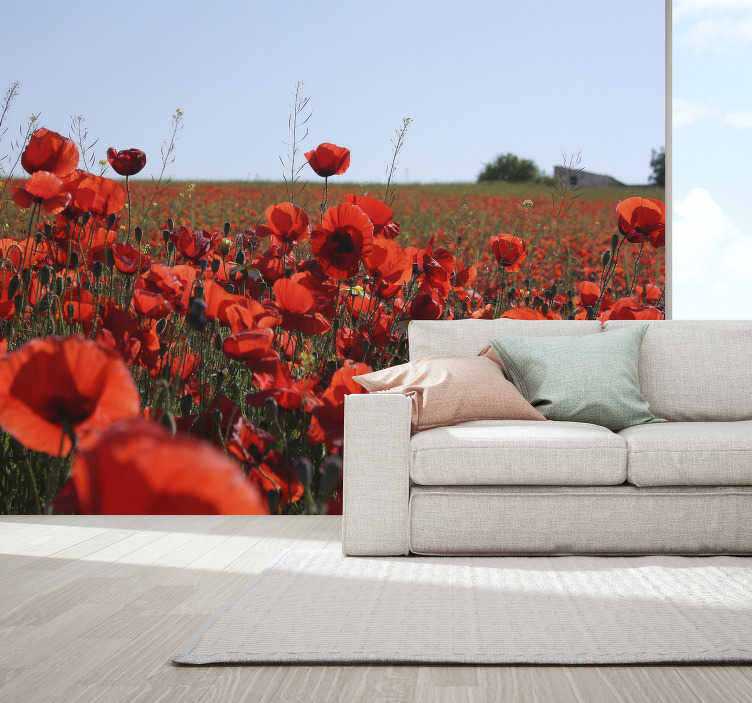 TenStickers. Grass field with roses flower wall mural. Imagine the delicious rose scent by taking this punchy photo wall mural into your home. Ideal to welcome your visitors in a pleasant environment!