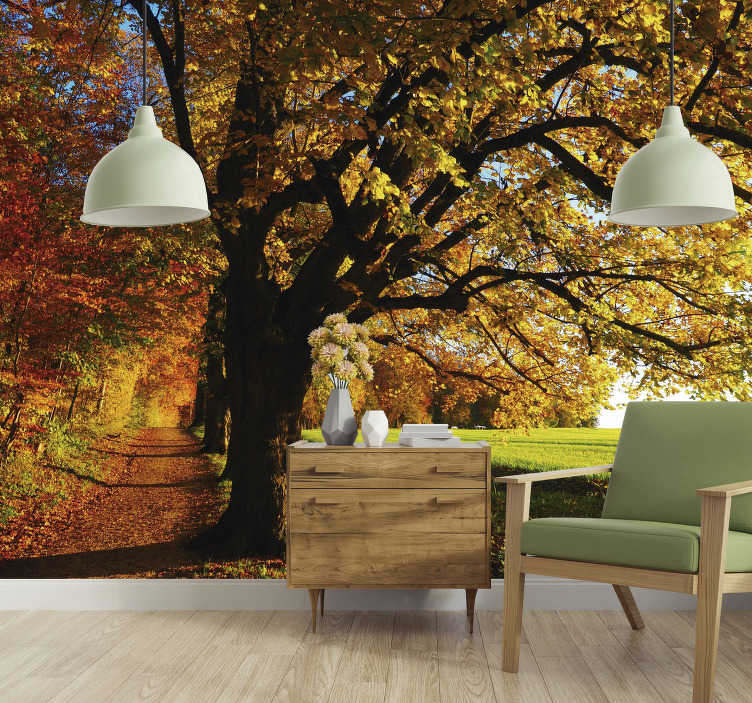 TenStickers. Beautiful autumn tree wall mural. Beautiful autumn, with stunning oranges, yellows and browns replacing the green tree tops. This tree wall mural is the perfect addition to any home