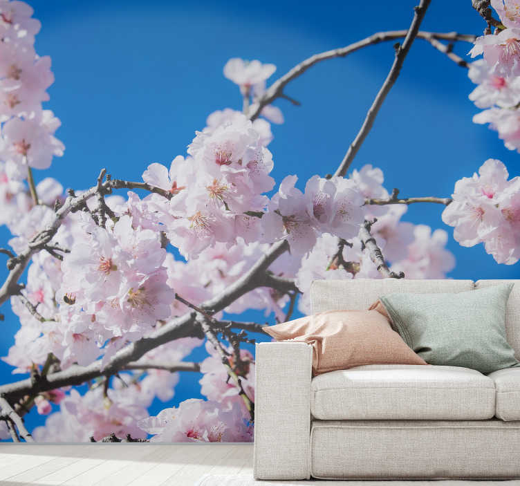 TenStickers. Cherry Tree landscape wall mural. With this photo wallmural of Cherry Tree on your walls you not only make it a pleasant place, but also create so many pleasant feelings for everyone.