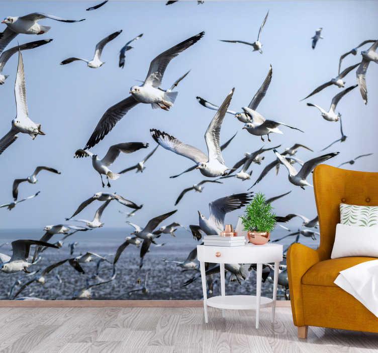 TenStickers. Fotomural decorativo de animais gaivotas. Este fotomural de animais de gaivotas pode ser colocado em qualquer ambiente que  desejar. Sinta a presença dessas gaivotas em sua casa! Vai adorar isso.