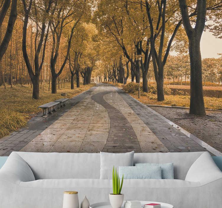 TenStickers. 가 숲 벽 벽화에도. 계절마다 가장 아름다운 것을 집으로 가져 오십시오! 이 풍경 벽 벽화는 가을에 나무로 둘러싸인 로데를 보여줍니다!