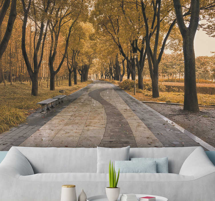 TenStickers. 在秋天的森林墙壁画路. 带上四季最美的家!这张风景墙的壁画在秋天显示出一匹被树木包围的骑术!