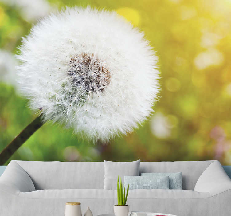 TenStickers. Dandelion in the sun flower wall mural. This beautiful photo wallpaper shows the fragile flower of a dandelion with the sun in the background With that you have the perfect decoration!