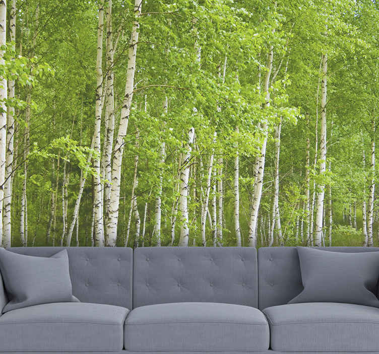 TenStickers. Landscape wall mural birch tree. Plant some trees in your house with this forest wall mural. You will feel so calm every time you look at this amazing birches.