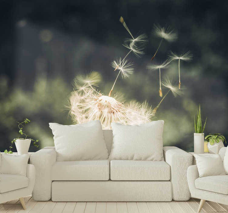 TenStickers. Dandelion seeds in sunlight nature wall mural. What a stunning view! This nature wall mural with the photo of a dandelion losing its seeds in the sunlight is just perfect for your walls.