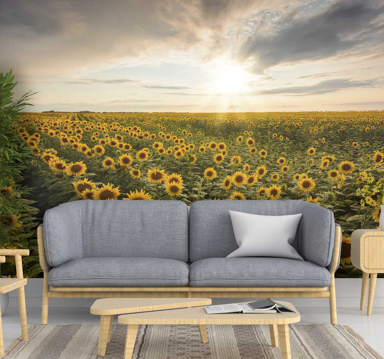 TenStickers. Endless field of blooming sunflowers meadow wall mural. Scenery wall mural full of an endless field of blooming sunflowers. Is it a paradise already? Order in any size you need !