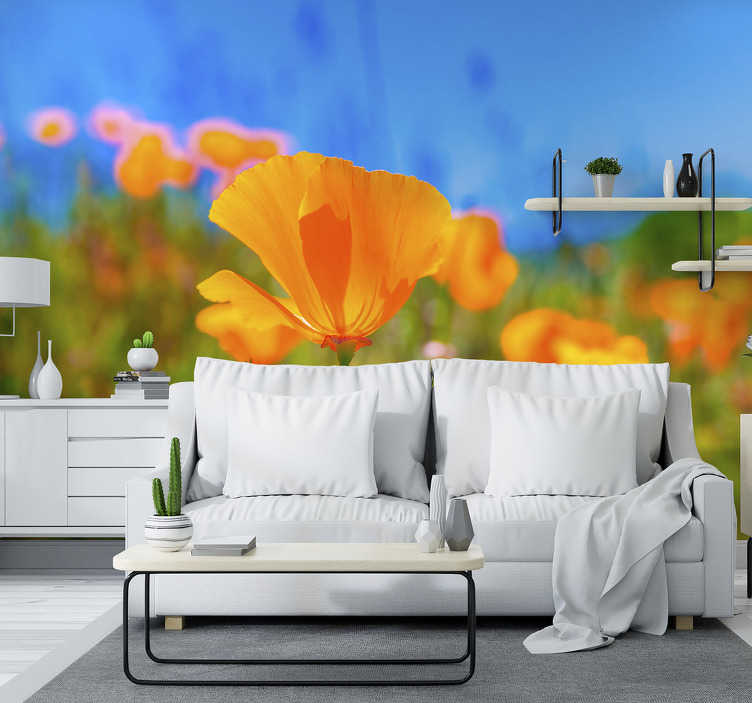 TenStickers. Photo murale Coquelicots orange. Cette photo murale fleurs montre un champ avec de beaux coquelicots orange. Facile à appliquer et disponible dans toutes les tailles dont vous avez besoin.