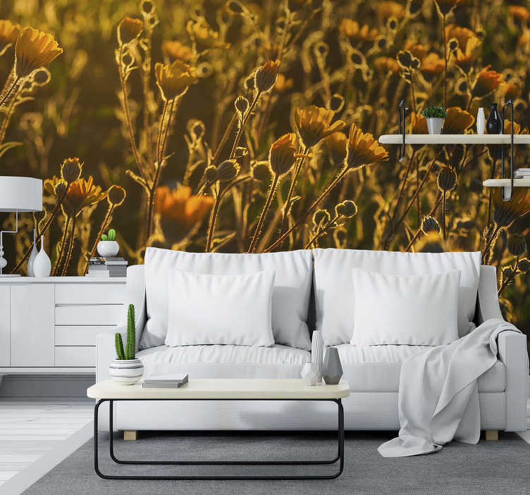 TenStickers. Warm poppy flower landscape photo mural. This flower photo wallpaper shows a close up view of a field with beautiful poppies. Warm orange colour scheme to fit into your living room.