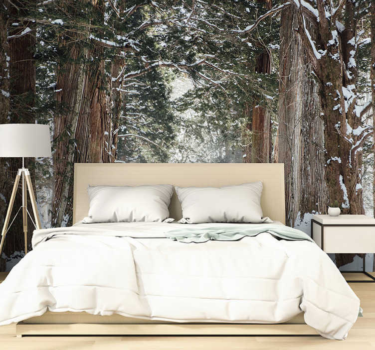 TenStickers. Winter forest trees mural. Do you like the snow period,? Then we have the perfect piece of photography and wall mural for you! Sign up for 10% off.