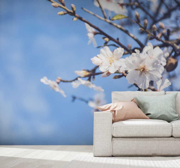 TenStickers. Amandelboom muurschildering behang. Dit prachtige amandelboom fotobehang toont de bloemen in een mooie zacht roze kleur. Bezoek onze website voor instructies.