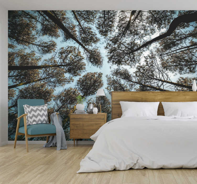 TenStickers. Forest from below forest wall mural. Feel as if you are lying on the forest floor, staring up at the trees and feeling relaxation. This is the perfect forest wall mural for your home!