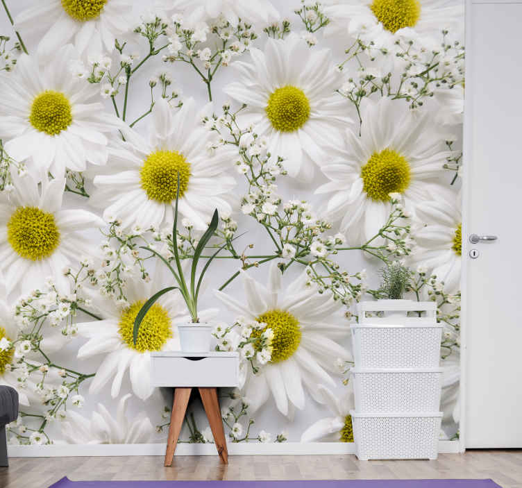 TenStickers. Daisy flower mural wallpaper. Decorate the walls of your house with this beautiful white Daisy flower design. Add some decoration to your walls  that you can enjoy for a long time.