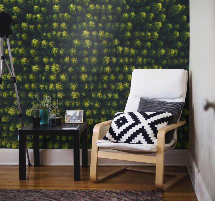 TenStickers. Luchtfoto bos foto muurschildering. Een luchtfoto bos fotobehang die u een breed oppervlak van een bos laat zien en uw huis levendig versiert! Extreem duurzaam materiaal.