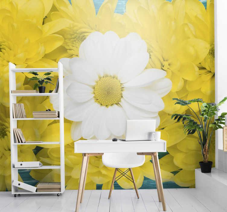 TenVinilo. Mural de flor margarita amarilla y blanca. Decora tu hogar con nuestro hermoso fotomural con flores de margaritas amarillas y blancas y agrega color y coseno a las paredes de tu hogar.