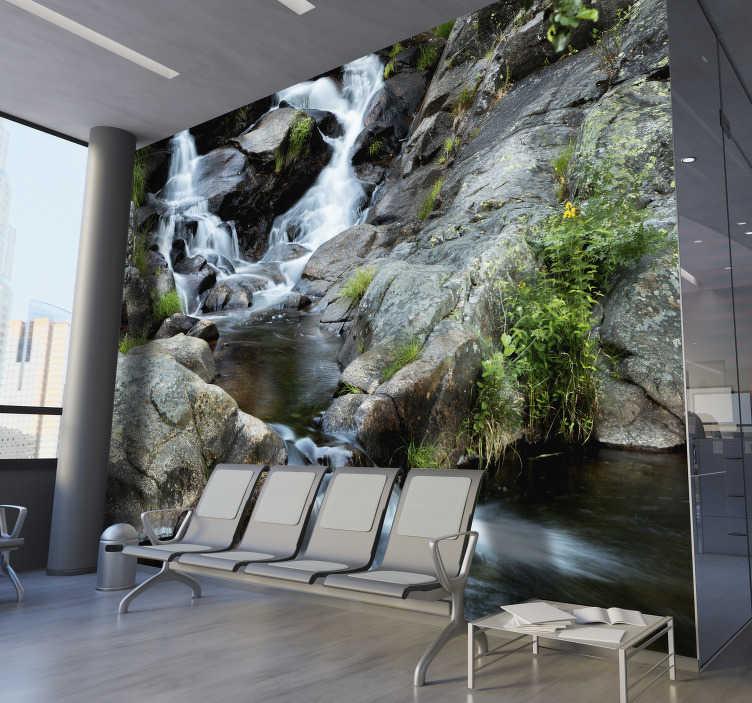 TenVinilo. Fotomural paisaje bosque cascada. Fantástico fotomural paisaje de un bosque frondoso con una cascada para decorar tu baño, salón o dormitorio con un diseño exclusivo. Envío exprés.