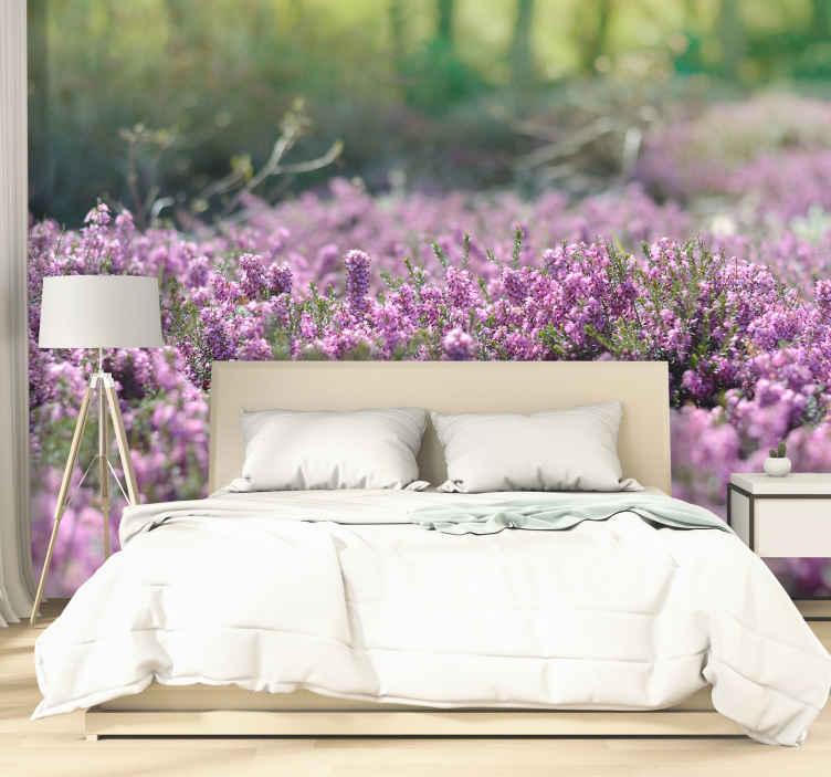 TenStickers. Photo murale paysage Paysage de bruyère. Le splendide décor d'arbres aux feuilles violettes sortant de l'eau sur cette photo murale chambre vous fera voyager dans des contrées féeriques.