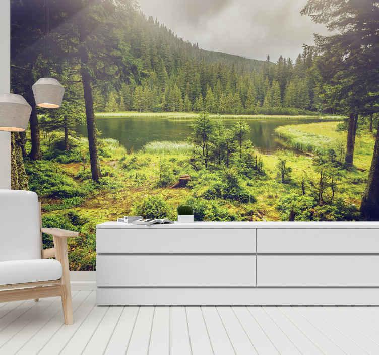 TenStickers. Papier peint forêt verte. Profitez de votre forêt privée avec cette murale d'arbre, qu'il pleuve ou non à l'extérieur. Commandez ce morceau de nature chez vous. Image de haute qualité!