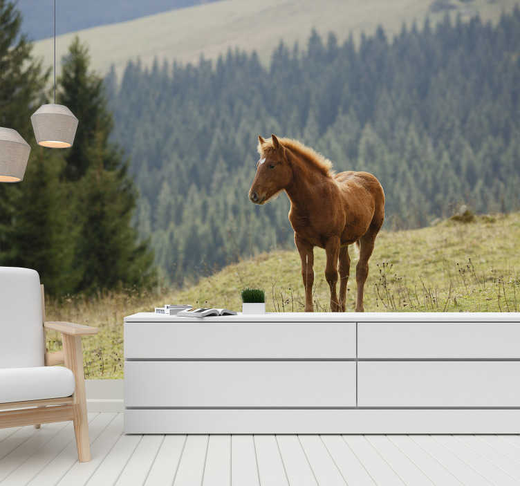 TenStickers. Horse in the forest mural wallpaper. Beautiful horse with the forest background makes this landscape wall mural a perfect decoration of your house. Free delivery!
