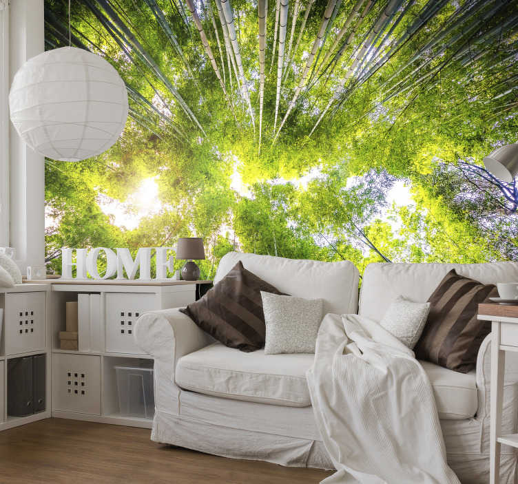 TenStickers. Bamboo Garden Mural Wallpaper. Transform any room in your home into an oriental paradise with this bamboo tree wall mural. Worldwide delivery available now!