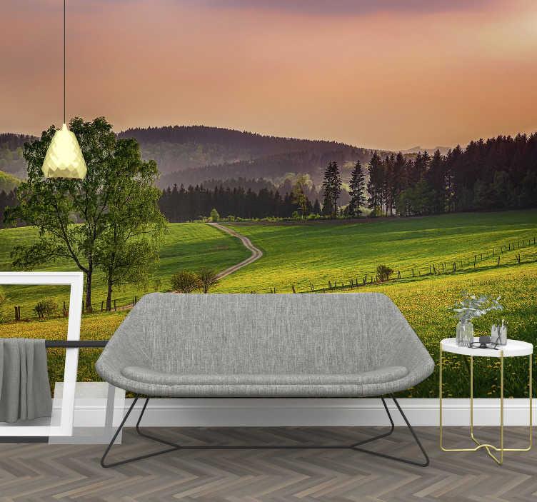 TenStickers. Sauerland bei Nacht Fototapete. Genießen Sie unsere Blick auf das Sauerland bei Nacht Fototapete mit dem schönen grünen Gras. Bringen Sie die Natur in Ihr Zuhause und genießen Sie das Prestige.
