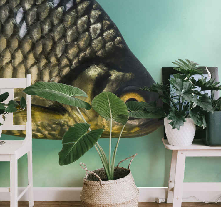 TenStickers. Carp wall mural. Create a magnificent view in your home, office or business space with our original and real looking carp animal wall mural.