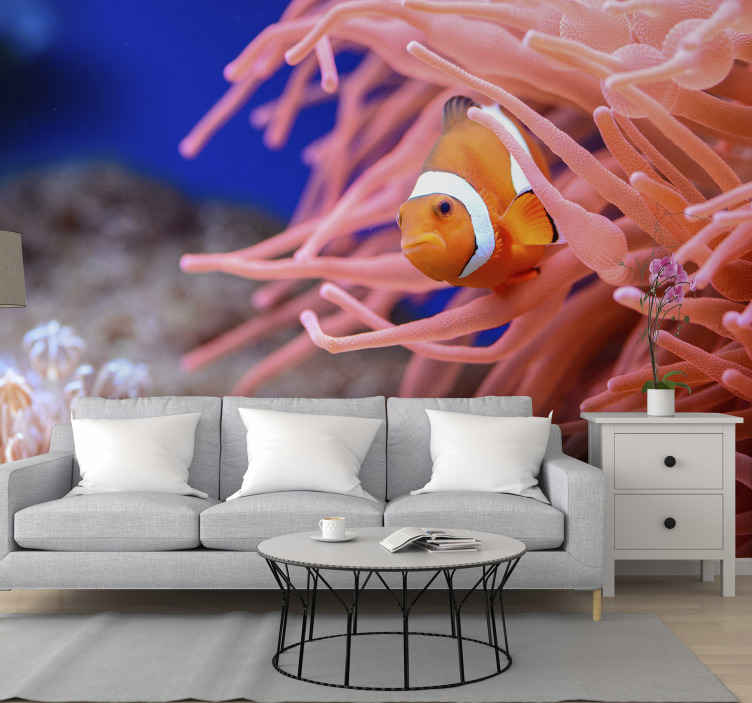 TenStickers. Clownfish wall mural. A wall mural decoration presented with the design of a clown fish with it typical surrounding feature in a real and original appearance.