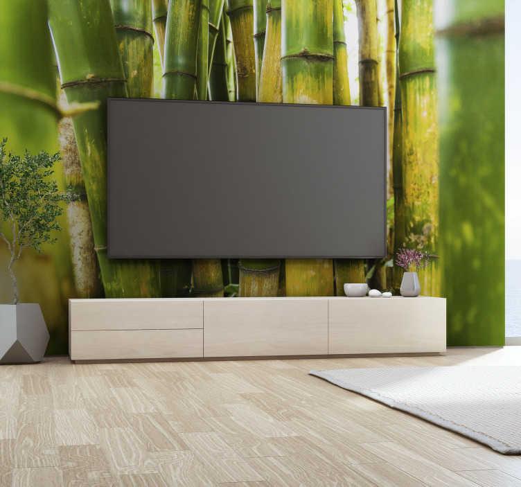TenStickers. 대나무 선 벽 벽화. 이 대나무 벽 벽화로 대나무 숲에서 길을 잃습니다. 이 디자인을 사용하면 방을 원하는 편안한 장소로 바꿀 수 있습니다