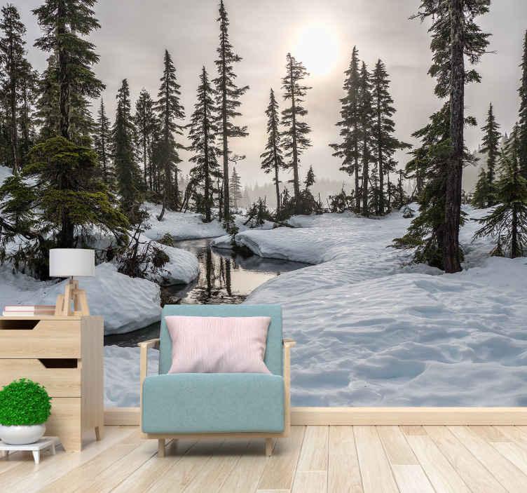 TenVinilo. Mural para pared paisaje nevado con sol de invierno. Fotomural bosquede invierno con un paisaje forestal con nieve y sol brillando para refrescar tu casa llevando naturaleza ¡Envío gratuito!