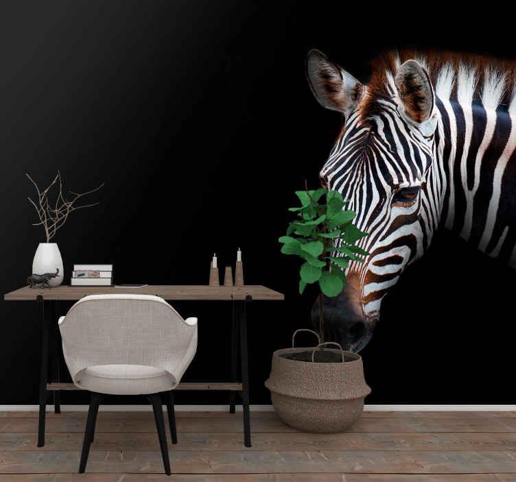 TenStickers. Zebra slika životinjskih freski. Fotomural sa zebrom. Izrađena od visokokvalitetnih materijala i laka za čišćenje i nanošenje na zid. Provjerite sami! Vinil protiv mjehurića.