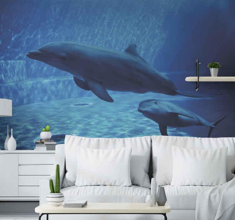 TenStickers. Fotomurais paisagistícos Golfinhos nadando. Se você ama o oceano, a vida marinha e até os golfinhos, por que não olhar para este belo e realista fotomural vinílico de parede oceânico? Nade na água hoje!