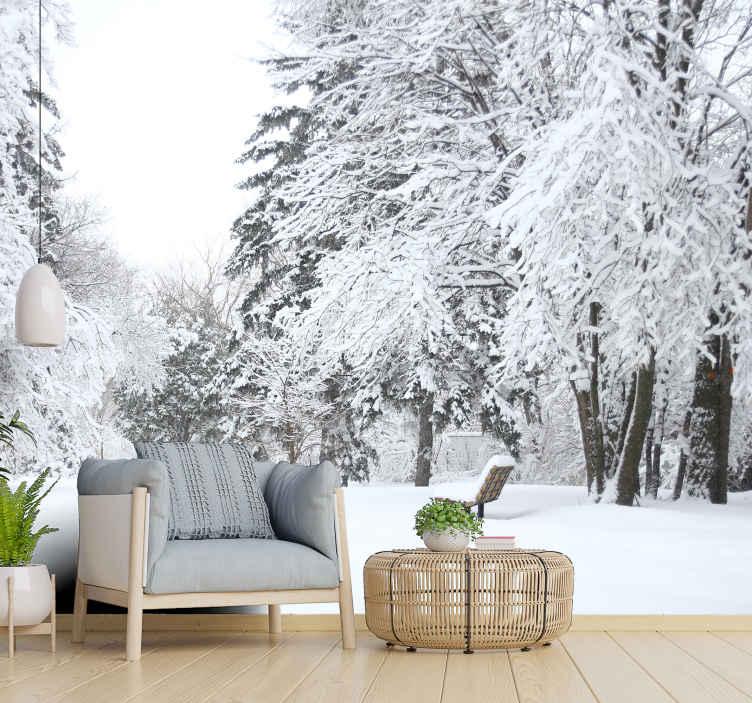 TenStickers. 숲 벽화 벽지에 눈이 내리는. 눈이 내리고 몽환적이고 우아한 자연 사진 벽화가 손님을 떨게 만듭니다! 그것은 멋지다! 선호도에 맞게 다양한 크기 중에서 선택하십시오.