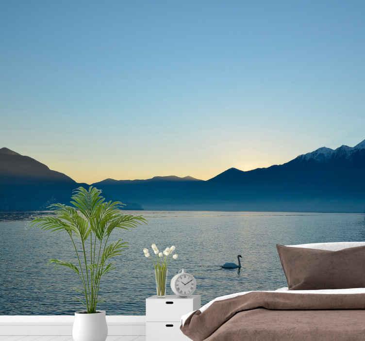 TenStickers. Labutí plavecké nástěnné malby. ! po dlouhém dni přijdete domů a uvidíte skvostné jezero, když vejdete do svého obývacího pokoje . objednat teď ! donáška domů !
