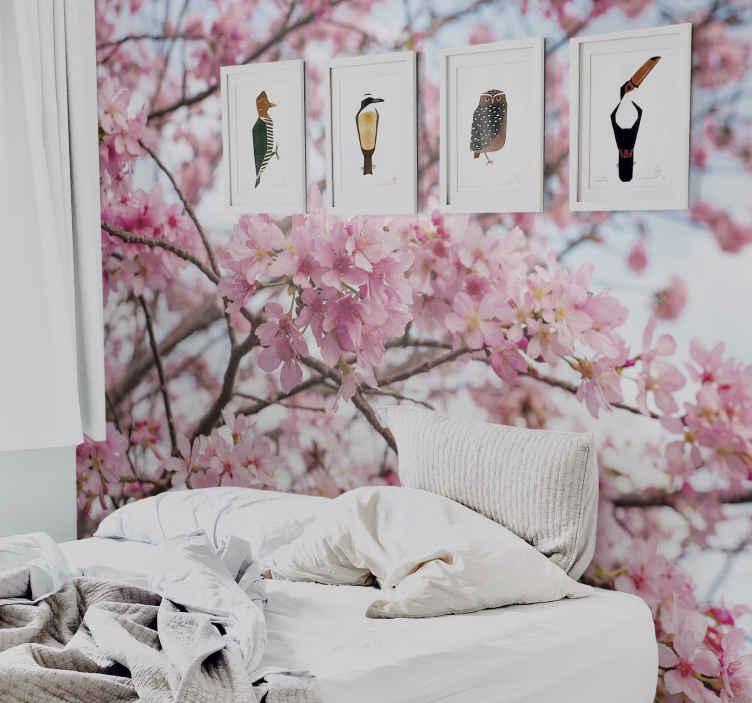 TenStickers. Fotomurale paesaggi Sfondo del cielo albero di fiori di ciliegio. Avere questo design fotomurale floreale sulle tue pareti oggi! Può essere facilmente applicato utilizzando il nostro manuale fornito con l'ordine.